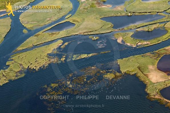Survol (à 1000 pieds AFSC) de la zone écologique sensible du delta de Leyre , sur la commune de Biganos (33380), commune du Bassin d'Arcahon, département de la Gironde, région Aquitaine, France - Juillet 2015