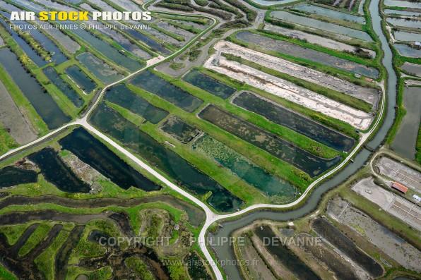 Photo aérienne des marais salant de la vie sur les communes de Saint-Gilles-Croix-de-Vie et Saint-Hilaire-de-Riez (85) , département de la Vendée; région Pays de la Loire, France. Prise de vue 21 avril 2016