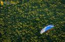 Forêt de Saint-chéron survolée par un paramoteur vue du ciel