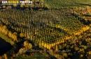 Saint-Maurice-Montcouronne vue du ciel  en automne