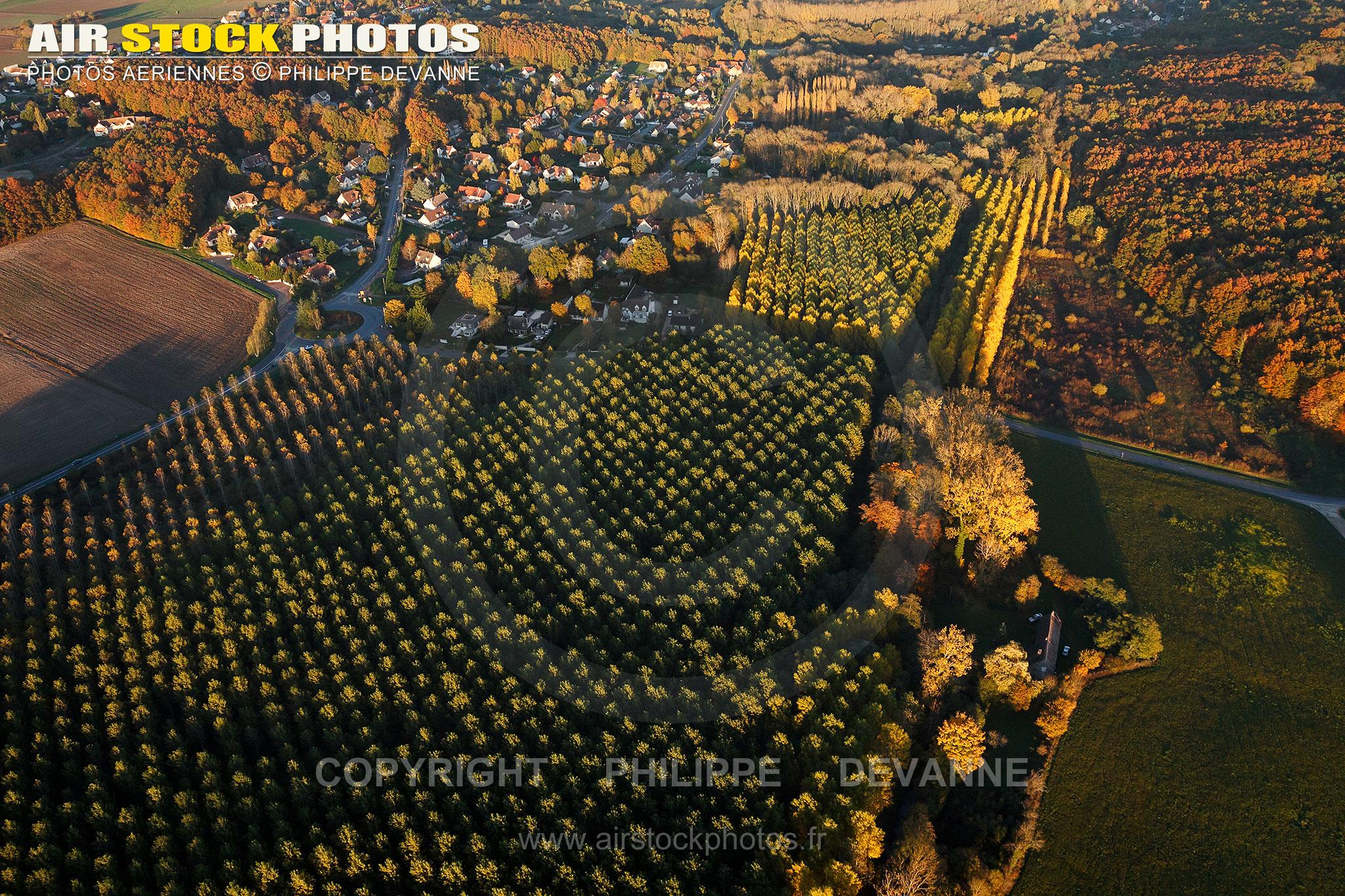 Saint-Maurice-Montcouronne vue du ciel