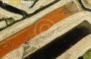 Salines ostréicoles de St-Pierre-d'Oléron